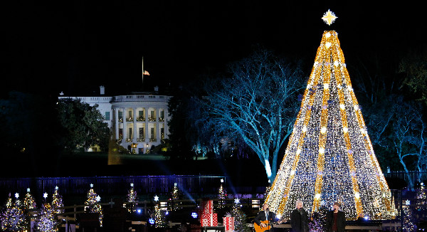 the lighting of the national christmas tree celebrates its 95th year this years festivities take place on nov 30 at 5 pm free tickets are awarded